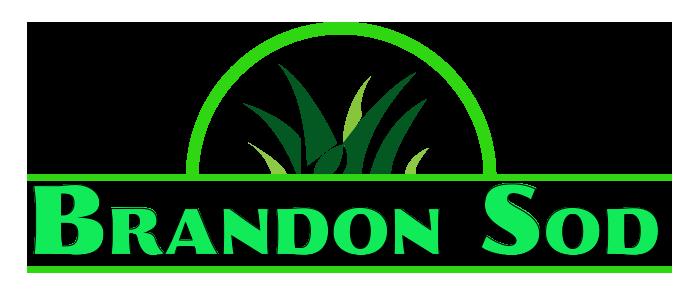 Brandon Sod